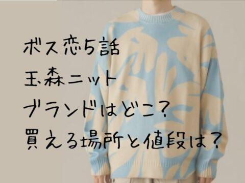 ボス恋の玉森衣装ニット5話のブランドはどこ?買える場所と値段は?