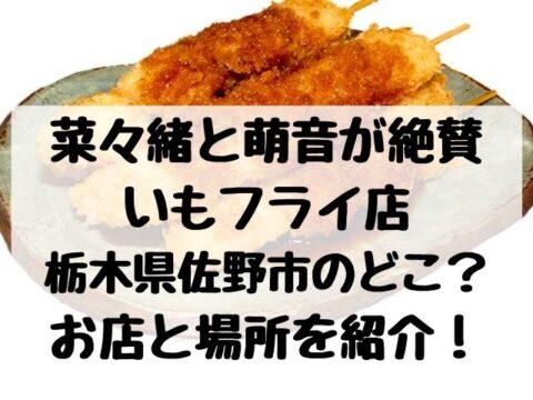 菜々緒と萌音絶賛いもフライ店は栃木県佐野市のどこ?お店と場所を紹介!
